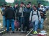 imigranti in Ungaria