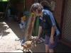 cresa canguri
