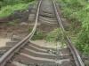 Bascov tren