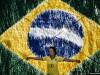 Suporter al Braziliei la CM de Fotbal 2014