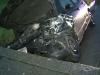 accident Bistrita-Nasaud - stiri