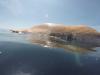 carcasa, balena - Youtube