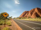 drum australia