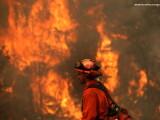 Incendii in California - GETTY