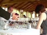 """Romania are vinuri de cinci stele. Opt experti internationali fac primul ghid al vinului romanesc: """"The Wine Book of Romania"""""""