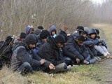 migranti la granita cu ungaria