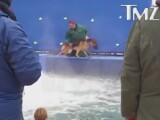 Clip socant de la filmarile unui blockbuster de la Hollywood: un caine este brutalizat pentru o scena! Ce s-a intamplat