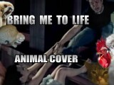 "iLikeIT. Viralul saptamanii: animale care canta ""Bring me to life"""