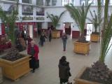 palmieri gara Constanta
