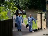 echipa de criminalisti UK