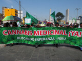 Legalizare marijuana Peru