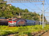tren oprit in gara in Romania