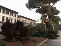 furtuna in Florenta