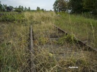Tren nazisti Polonia