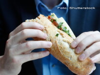 sendvis - Shutterstock