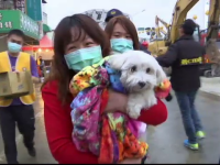 caine salvat Taiwan