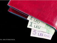 portofel cu lei FOTO SHUTTERSTOCK