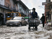 Barbat inundatie