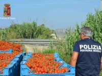 operatiune a politie din Italiai