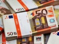 bancnote, euro, bani