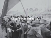 Documentarul Padurea - STIRI