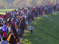 cover prima refugiati coloana