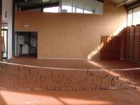 sala sport hambar