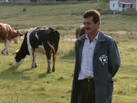 Tarani agricultura