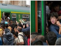 imigranti - gara Budapesta