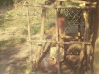 copil cusca Vaslui