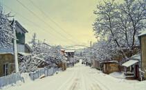 iarna, ger
