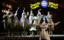 circul Barnum - Agerpres