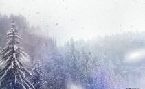 vremea - ninsoare