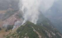 Incendiu, Parcul National Domogled, Mehedinti