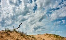 desertificare Romania