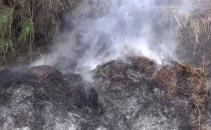 Incendiu in judetul Bacau