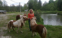 ponei