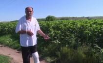 fermier atacat de mistret