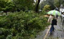 furtuna Bucuresti