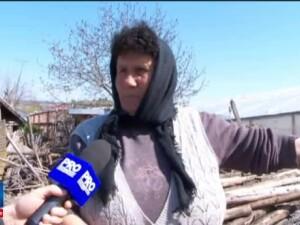 Iarna de saptamana trecuta a distrus 300 de hectare de solarii in Matca. Pierderile uriase suferite de legumicultori