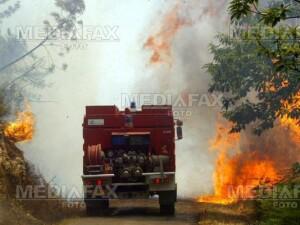 Incendiu intr-o padure din judetul Sibiu!