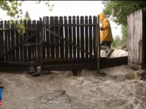 Furtunile au semanat paguba in Vrancea. Scena impresionanta cu un caine ce refuza sa plece de langa trupul fratelui inecat
