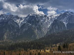 peisah de iarna cu brazi si munte in ROmania