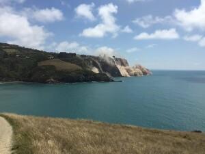 cutremur Noua Zeelanda - Twitter