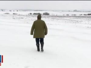 Ninsorile abundente anunta un an bogat pentru agricultura. Ce se intampla cu culturile sub stratul de 40 cm de zapada