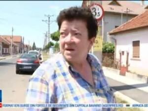 Accidente in Timisoara, din cauza unui semn de circulatie mascat de un pom. O familie intreaga a ajuns sambata la spital