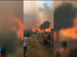 Incendii puternice de vegetatie in sudul Frantei. Peste 10.000 de oameni au fost evacuati peste noapte din calea flacarilor