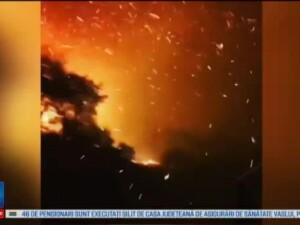 Focul continua sa faca ravagii in Franta, in zona statiunilor turistice de la Mediterana. 12.000 de persoane, evacuate
