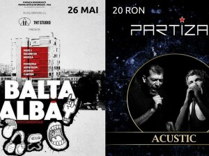 Documentar Balta Alba, Partizan