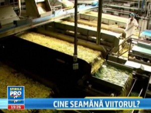 Campanie Stirile ProTv: Agricultura, bijuteria neglijata care poate scoate Romania din criza